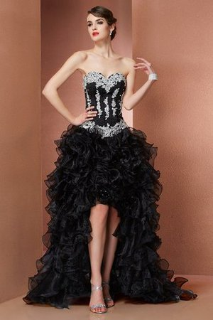 Princess Organza Appliques Asymmetrical Sleeveless Evening Dress