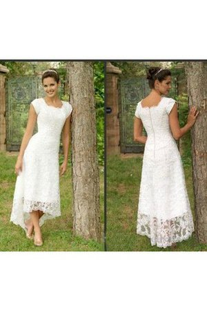 Lace Scoop Beach Elegant & Luxurious Zipper Up Wedding Dress